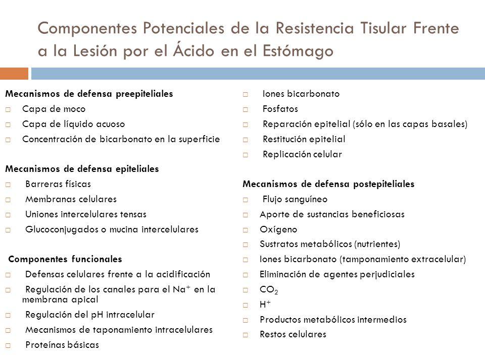 Sustancias que influyen en la presión del Esfínter Esofágico Inferior (EEI)