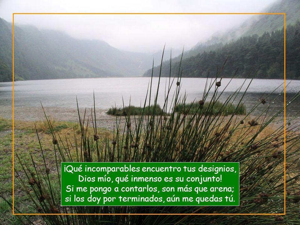 Vita Noble Powerpoints ¡Qué incomparables encuentro tus designios, Dios mío, qué inmenso es su conjunto.
