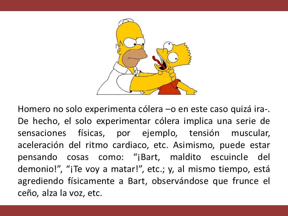 Homero no solo experimenta cólera –o en este caso quizá ira-.