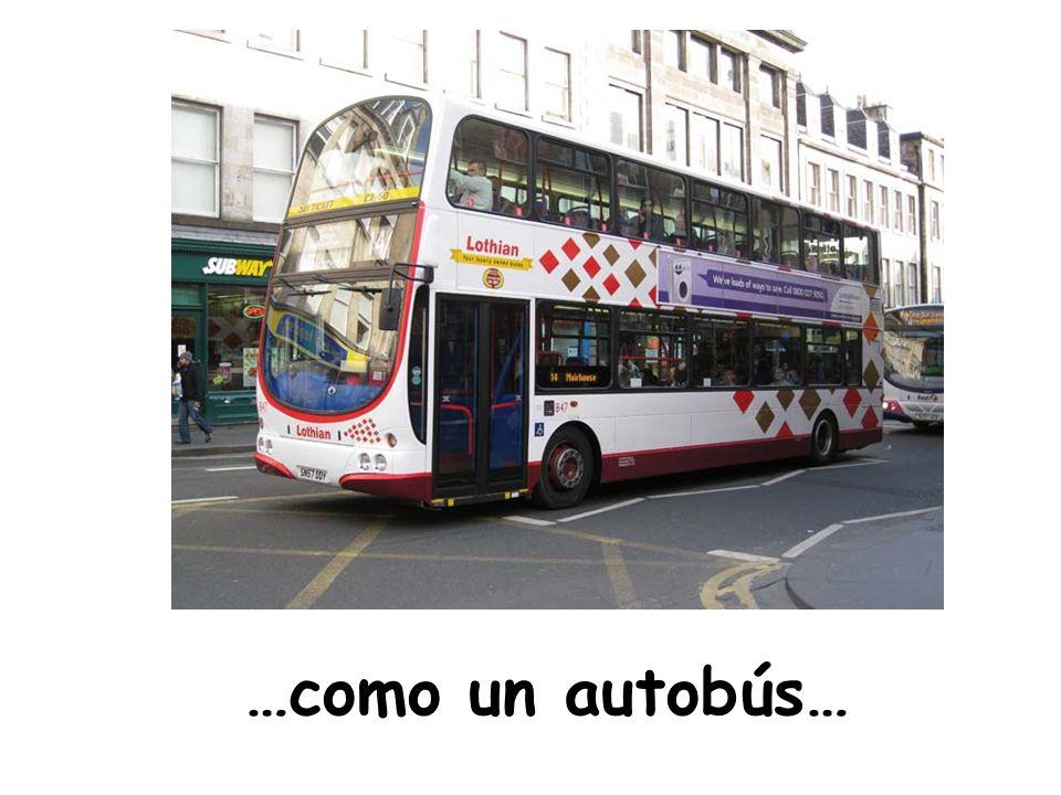 …como un autobús…