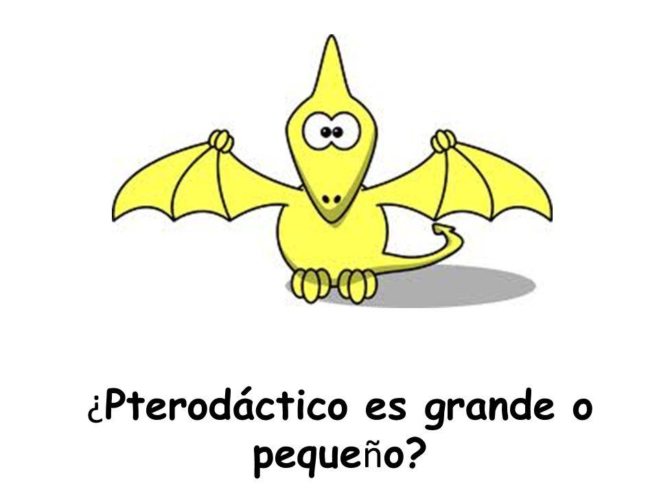 ¿ Pterodáctico es grande o peque ñ o?