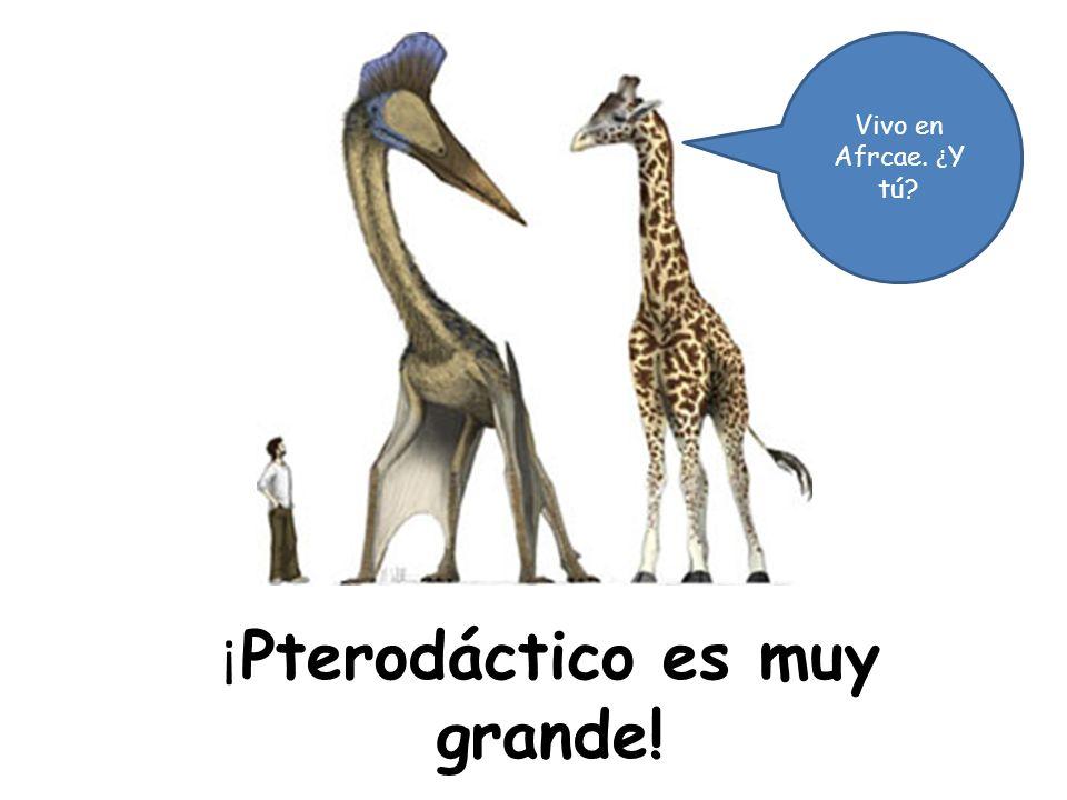 ¡ Pterodáctico es muy grande! Vivo en Afrcae. ¿ Y tú?