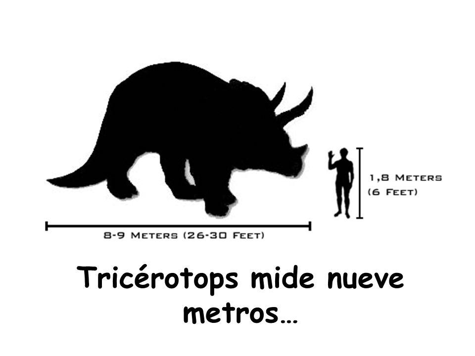 Tricérotops mide nueve metros…