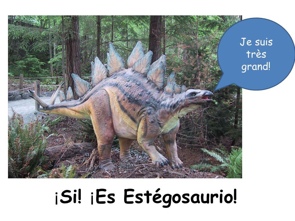 ¡ Si! ¡ Es Estégosaurio! Je suis très grand!