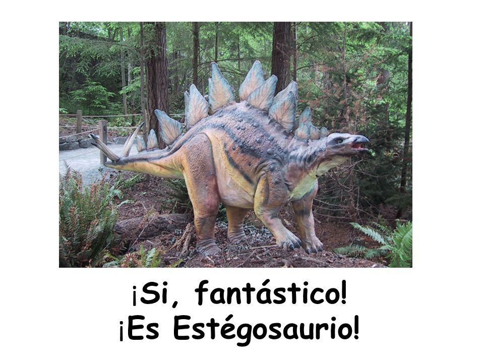 ¡ Si, fantástico! ¡ Es Estégosaurio!