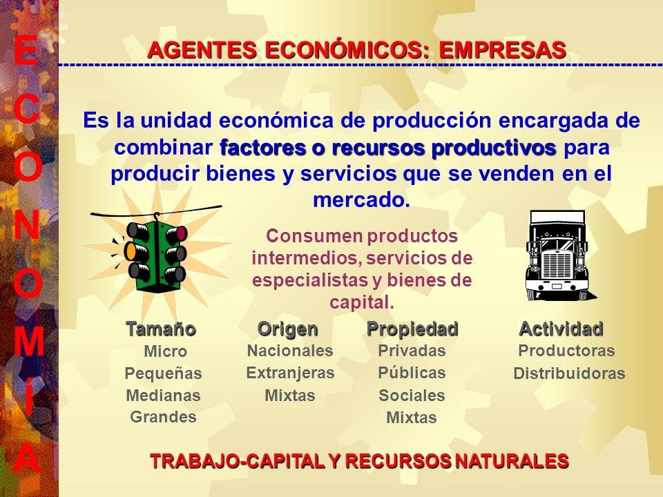 Es la unidad económica de producción encargada de combinar f ff factores o recursos productivos para producir bienes y servicios que se venden en el mercado.