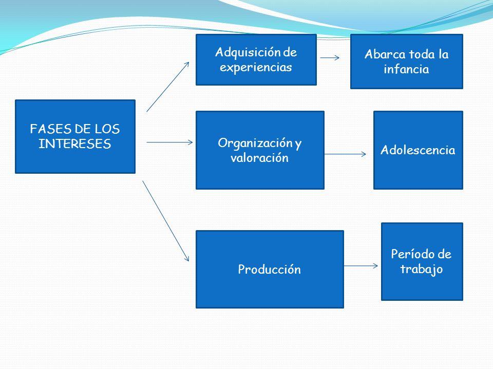 FASES DE LOS INTERESES Adquisición de experiencias Organización y valoración Producción Abarca toda la infancia Adolescencia Período de trabajo