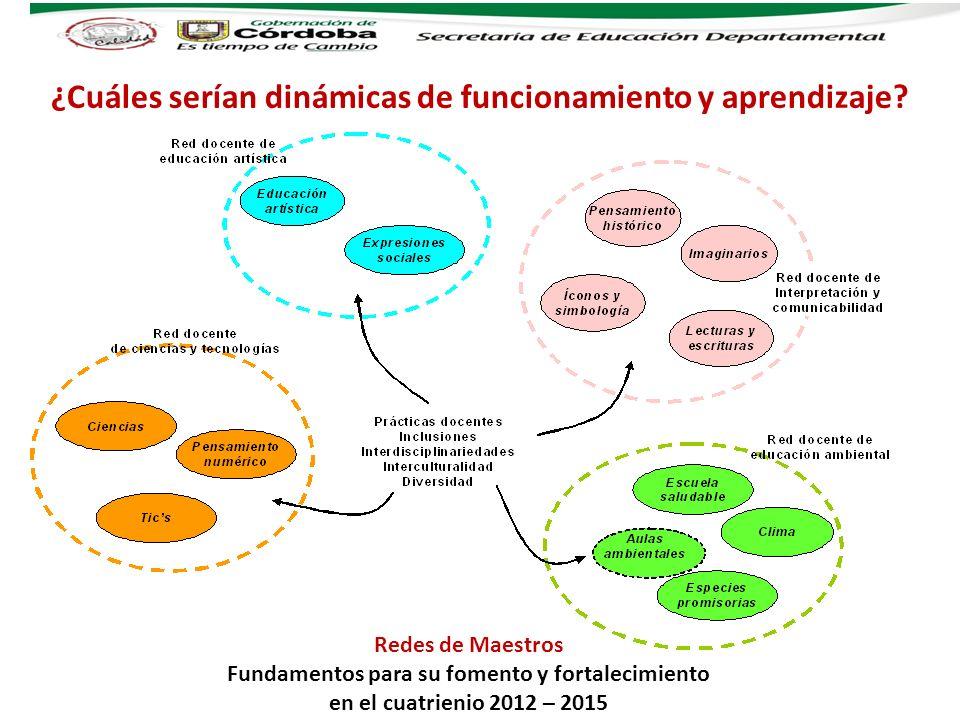 ¿Cuáles serían dinámicas de funcionamiento y aprendizaje? Redes de Maestros Fundamentos para su fomento y fortalecimiento en el cuatrienio 2012 – 2015
