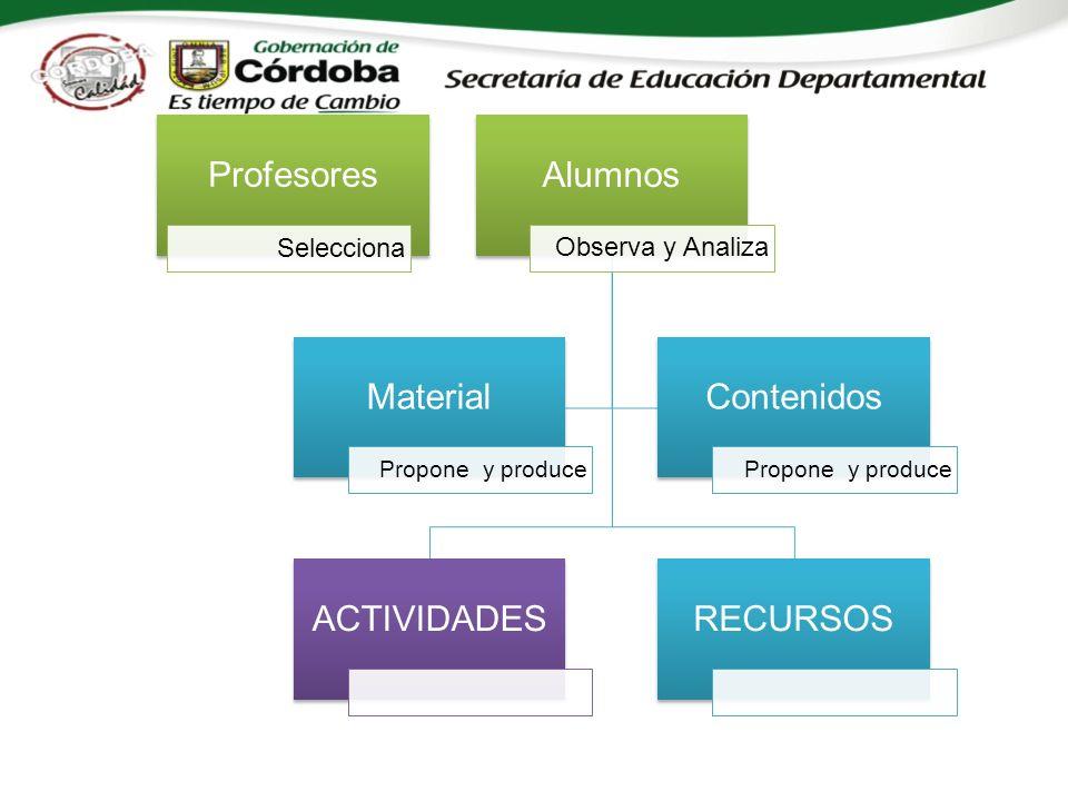 Profesores Selecciona Alumnos Observa y Analiza ACTIVIDADESRECURSOS Material Propone y produce Contenidos Propone y produce