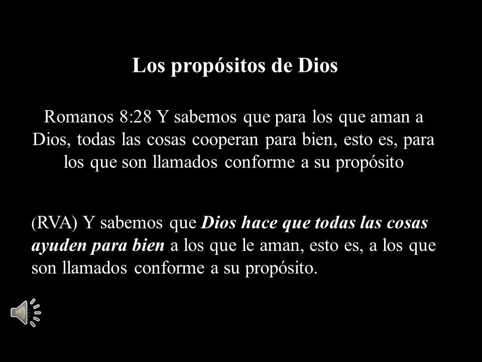 Romanos 8:28 Y sabemos que para los que aman a Dios, todas las cosas cooperan para bien, esto es, para los que son llamados conforme a su propósito (