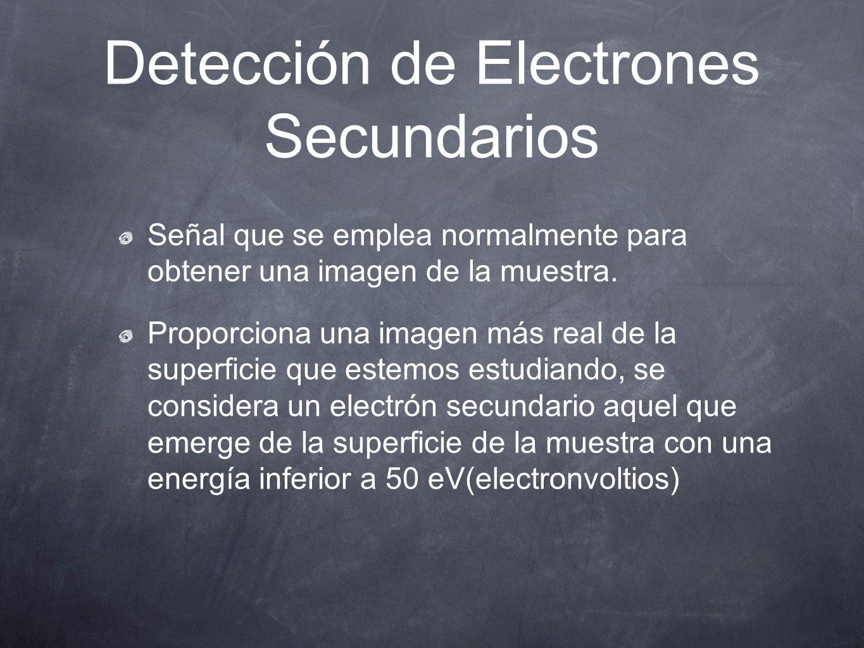Detección de Electrones Secundarios Señal que se emplea normalmente para obtener una imagen de la muestra. Proporciona una imagen más real de la supe