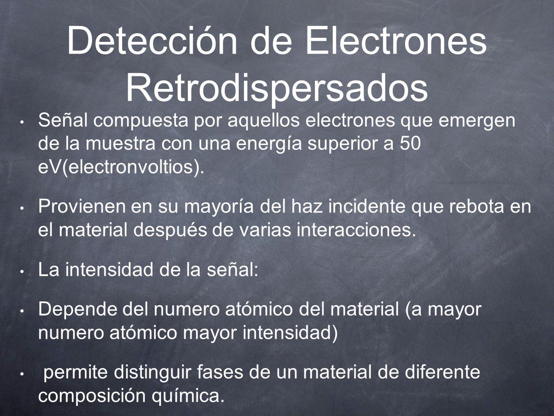 Detección de Electrones Retrodispersados Señal compuesta por aquellos electrones que emergen de la muestra con una energía superior a 50 eV(electron
