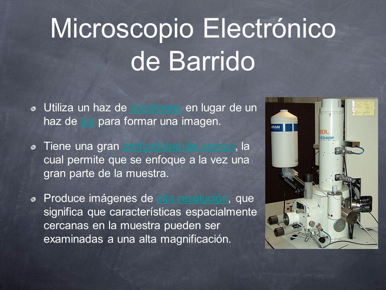 Microscopio Electrónico de Barrido Utiliza un haz de electrones en lugar de un haz de luz para formar una imagen.electronesluz Tiene una gran profundi