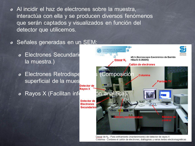 Al incidir el haz de electrones sobre la muestra, interactúa con ella y se producen diversos fenómenos que serán captados y visualizados en función de
