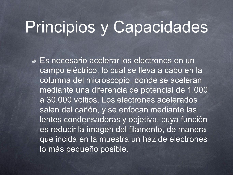 Principios y Capacidades Es necesario acelerar los electrones en un campo eléctrico, lo cual se lleva a cabo en la columna del microscopio, donde se a