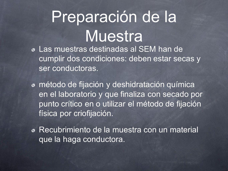 Preparación de la Muestra Las muestras destinadas al SEM han de cumplir dos condiciones: deben estar secas y ser conductoras. método de fijación y des