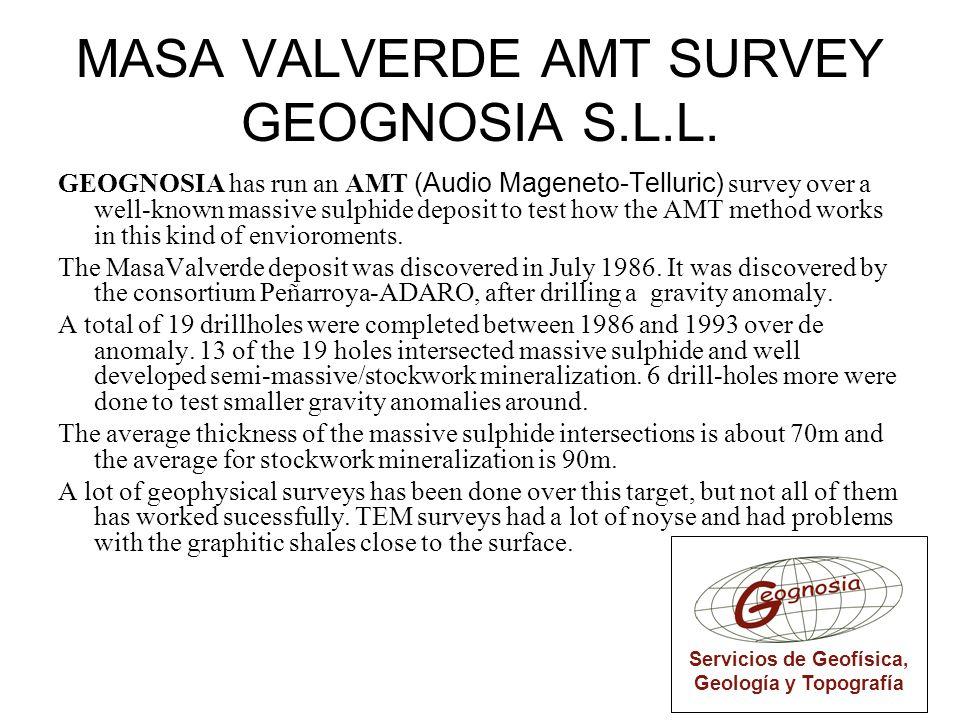 MASA VALVERDE AMT SURVEY GEOGNOSIA S.L.L.