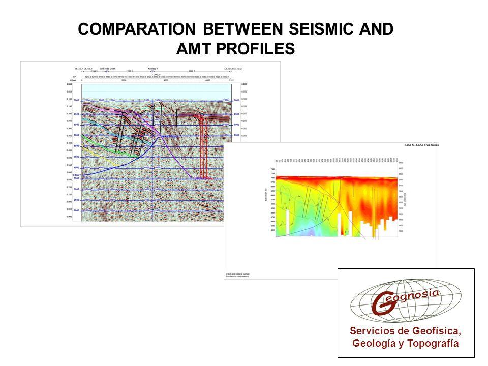 COMPARATION BETWEEN SEISMIC AND AMT PROFILES Servicios de Geofísica, Geología y Topografía