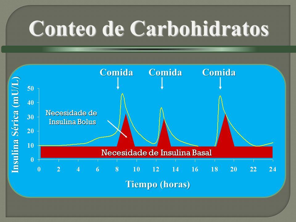 Insulina Sérica (mU/L) Tiempo (horas) Necesidade de Insulina Basal Necesidade de Insulina Bolus ComidaComidaComida