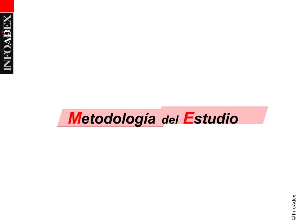 © InfoAdex M etodología del E studio