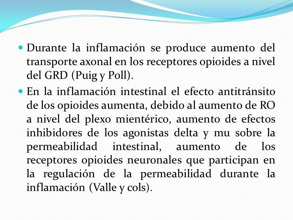 Durante la inflamación se produce aumento del transporte axonal en los receptores opioides a nivel del GRD (Puig y Poll). En la inflamación intestinal