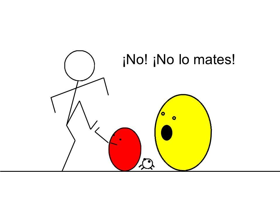 ¡No! ¡No lo mates!