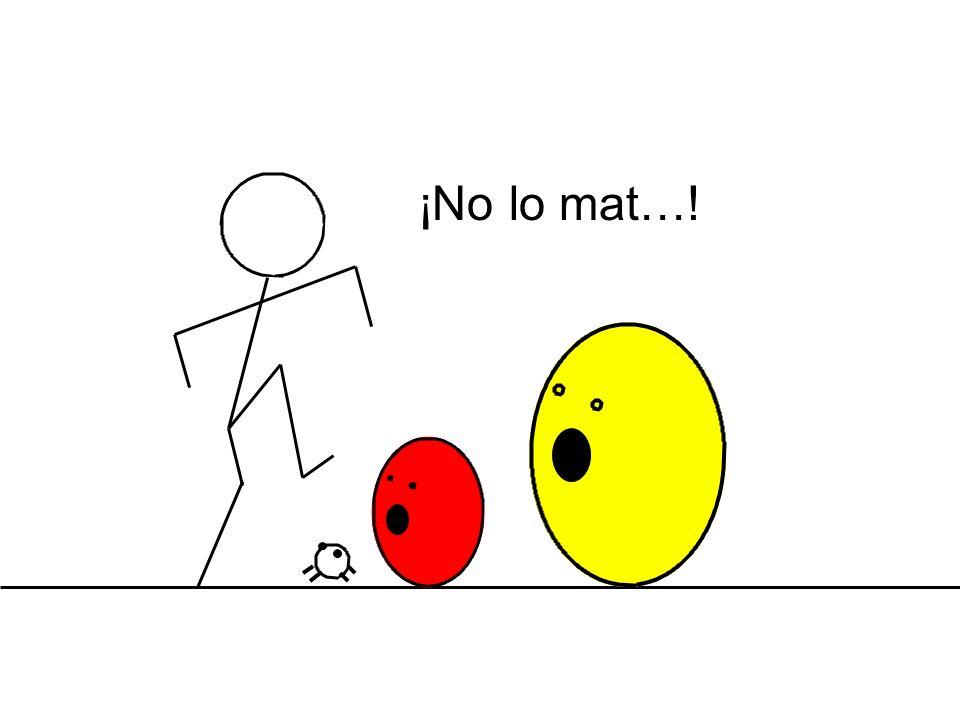 ¡No lo mat…!