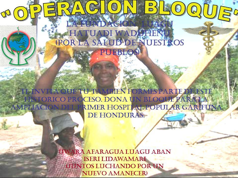 LA FUNDACION LUAGU HATUADI WADUHEÑU (POR LA SALUD DE NUESTROS PUEBLOS) TE INVITA QUE TU TAMBIEN FORMES PARTE DE ESTE HISTORICO PROCESO. DONA UN BLOQUE