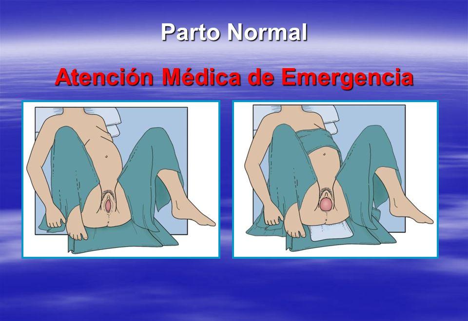 Atención Médica de Emergencia Parto Normal