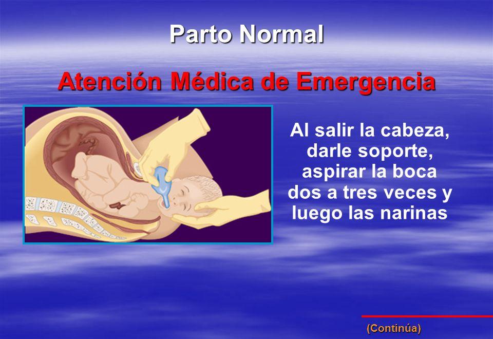 Al salir la cabeza, darle soporte, aspirar la boca dos a tres veces y luego las narinas Atención Médica de Emergencia Parto Normal (Continúa)