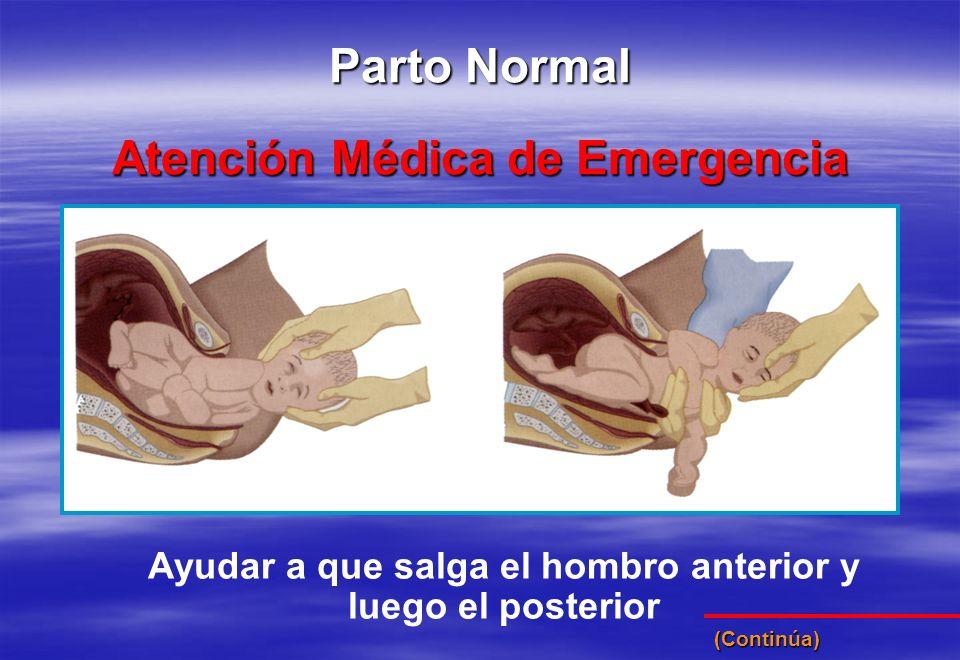 Ayudar a que salga el hombro anterior y luego el posterior Atención Médica de Emergencia Parto Normal (Continúa)