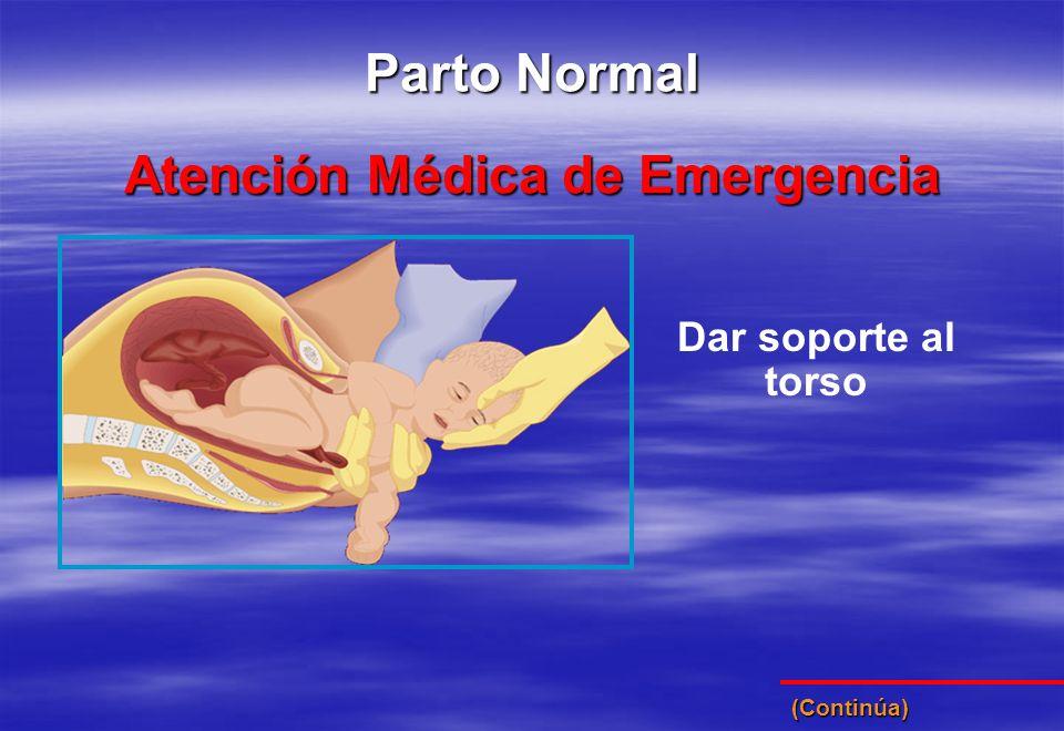 Dar soporte al torso Atención Médica de Emergencia Parto Normal (Continúa)