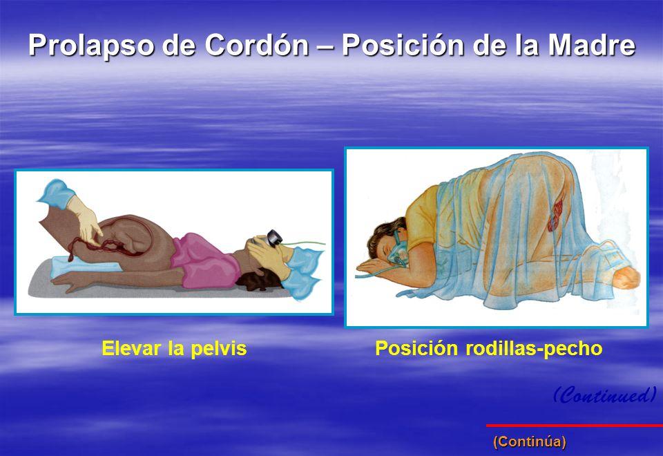 (Continued) Prolapso de Cordón – Posición de la Madre Elevar la pelvisPosición rodillas-pecho (Continúa)