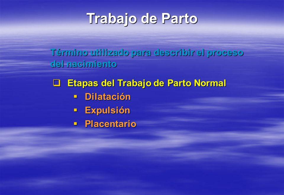 Trabajo de Parto Término utilizado para describir el proceso del nacimiento Etapas del Trabajo de Parto Normal Etapas del Trabajo de Parto Normal Dila