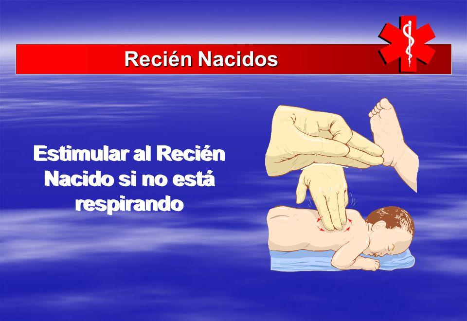Estimular al Recién Nacido si no está respirando Recién Nacidos Recién Nacidos