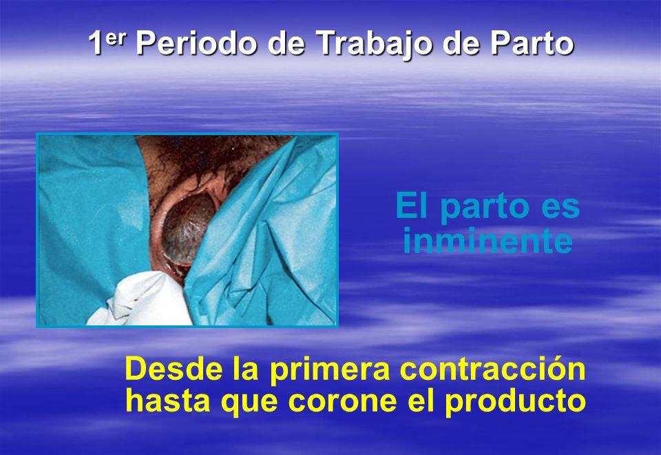 1 er Periodo de Trabajo de Parto El parto es inminente Desde la primera contracción hasta que corone el producto
