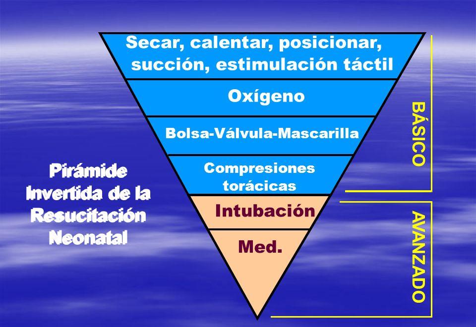 Secar, calentar, posicionar, succión, estimulación táctil Oxígeno Bolsa-Válvula-Mascarilla AVANZADO BÁSICO Intubación Med. Pirámide Invertida de la Re