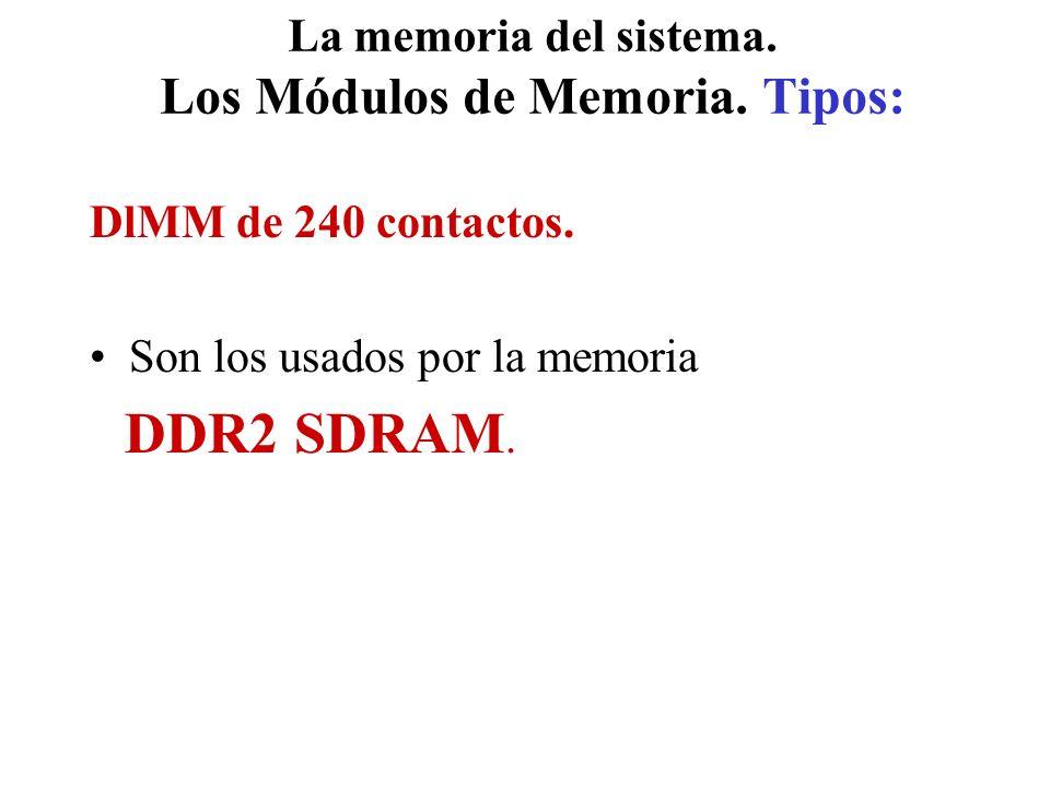 La memoria del sistema. Los Módulos de Memoria. Tipos: DlMM de 240 contactos. Son los usados por la memoria DDR2 SDRAM.