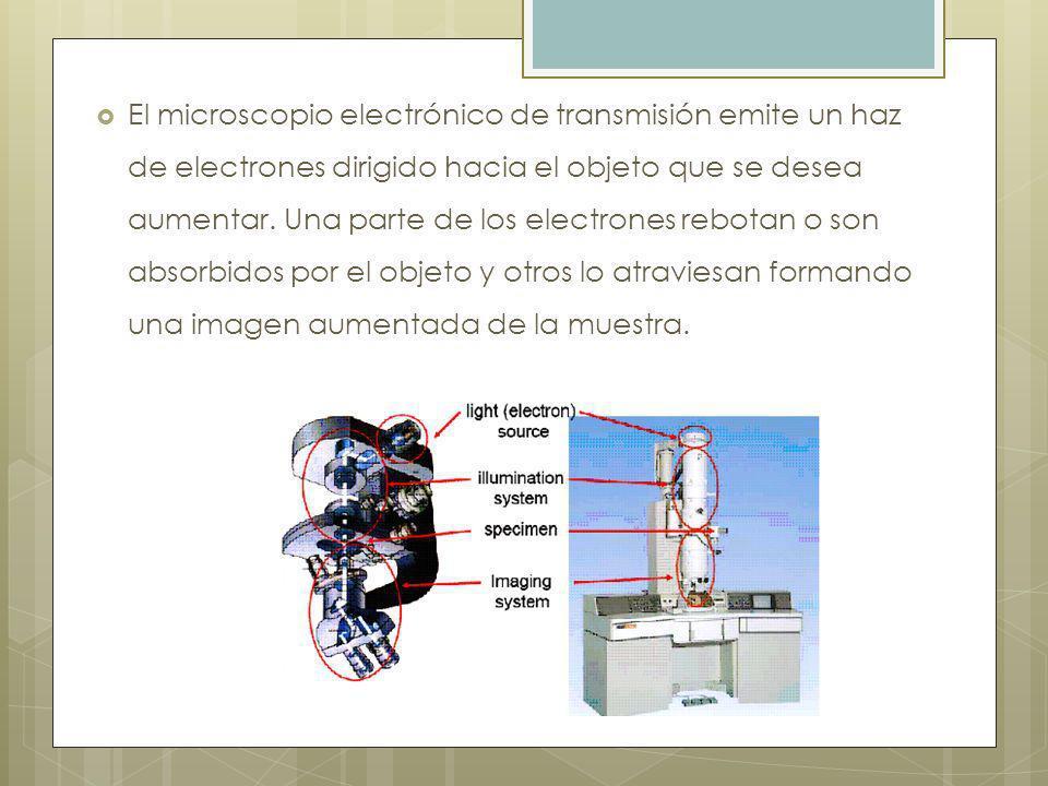 El microscopio electrónico de transmisión emite un haz de electrones dirigido hacia el objeto que se desea aumentar.
