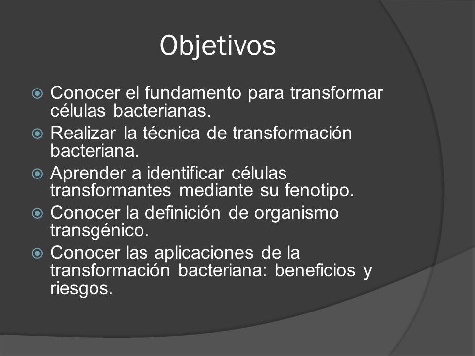 Objetivos Conocer el fundamento para transformar células bacterianas. Realizar la técnica de transformación bacteriana. Aprender a identificar células
