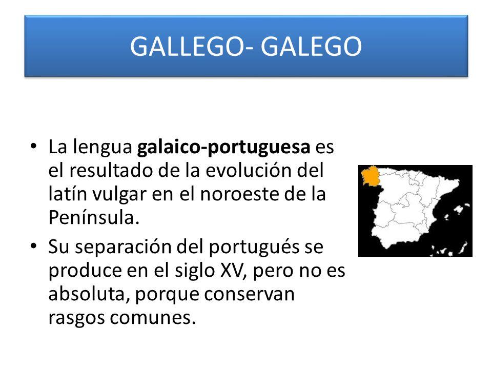 Alcanzó pronto prestigio literario, pues en el siglo XIII Alfonso X (1221-1284) escribió las Cantigas a la Virgen en galaico- portugués..