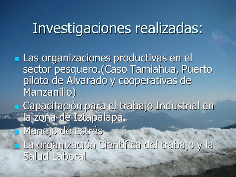Investigaciones realizadas: Las organizaciones productivas en el sector pesquero.(Caso Tamiahua, Puerto piloto de Alvarado y cooperativas de Manzanill