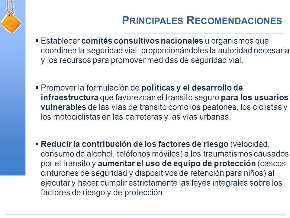 P RINCIPALES R ECOMENDACIONES Establecer comités consultivos nacionales u organismos que coordinen la seguridad vial, proporcionándoles la autoridad necesaria y los recursos para promover medidas de seguridad vial.