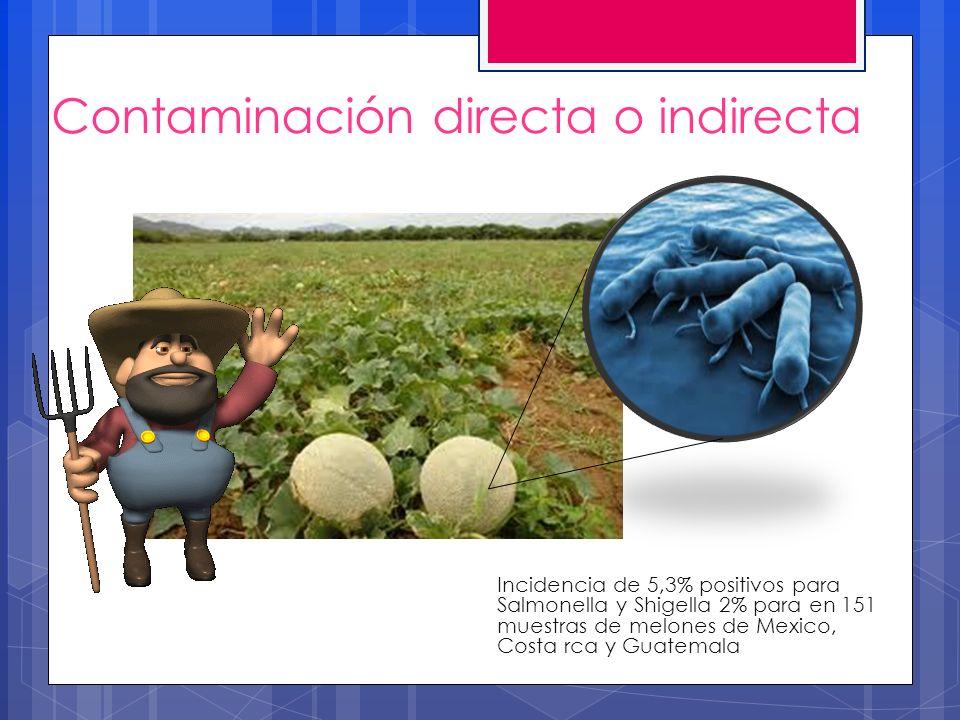 Contaminación directa o indirecta Incidencia de 5,3% positivos para Salmonella y Shigella 2% para en 151 muestras de melones de Mexico, Costa rca y Gu