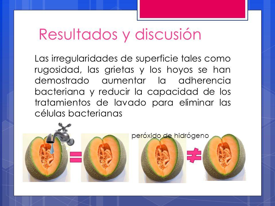 Resultados y discusión Las irregularidades de superficie tales como rugosidad, las grietas y los hoyos se han demostrado aumentar la adherencia bacter