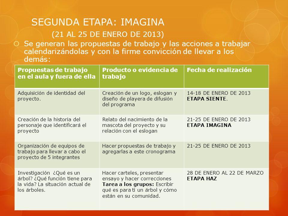 Se generan las propuestas de trabajo y las acciones a trabajar calendarizándolas y con la firme convicción de llevar a los demás: SEGUNDA ETAPA: IMAGI