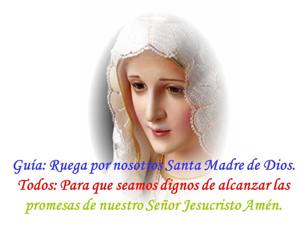 Guía: Y el Verbo se hizo carne. Todos: Y habitó entre nosotros. Dios te Salve María...