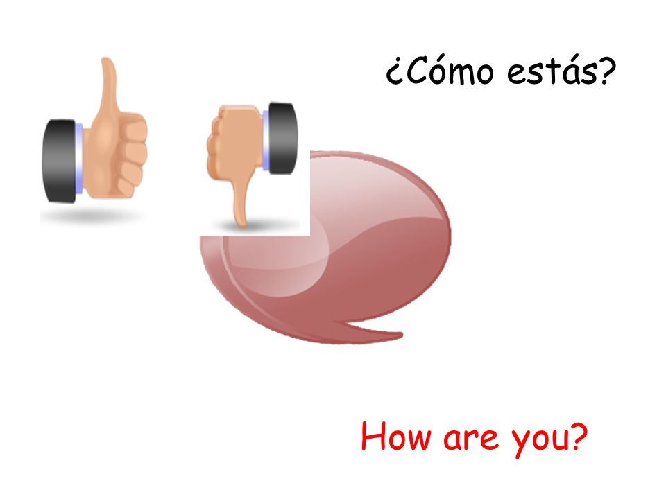 ¿Cómo estás? How are you?