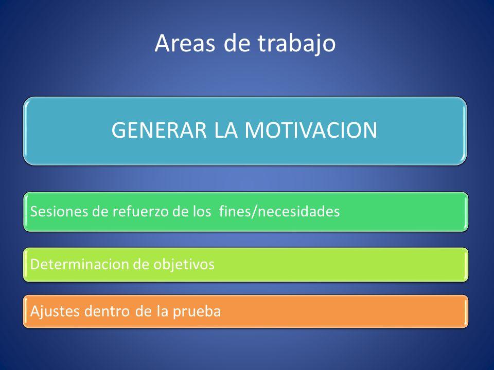 Areas de trabajo GENERAR LA MOTIVACION Sesiones de refuerzo de los fines/necesidades Determinacion de objetivos Ajustes dentro de la prueba
