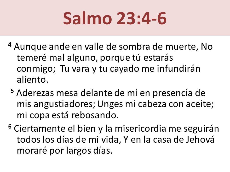 Salmo 23:4-6 4 Aunque ande en valle de sombra de muerte, No temeré mal alguno, porque tú estarás conmigo; Tu vara y tu cayado me infundirán aliento.